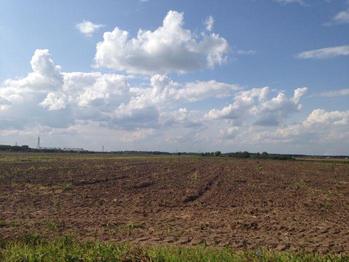 земля в аренду под сельхоз назначения мог желанию